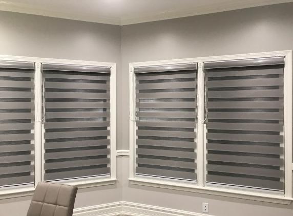 horizontal zebra dual roller blinds window shades